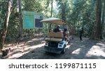 sandakan sabah  malaysia  ...   Shutterstock . vector #1199871115