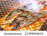sanma  grilled fish  japanese... | Shutterstock . vector #1199894815