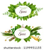 spices  herbs and organic... | Shutterstock .eps vector #1199951155