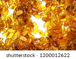 yellow amber mineral texture as ... | Shutterstock . vector #1200012622