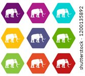 mammoth icons 9 set coloful...   Shutterstock .eps vector #1200135892