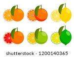 icons vector citrus fruits ... | Shutterstock .eps vector #1200140365