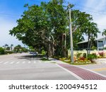 the big banyan tree in the...   Shutterstock . vector #1200494512