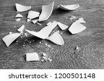 white shards of a broken plate... | Shutterstock . vector #1200501148