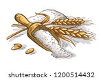 colorfull wooden scoop of fresh ... | Shutterstock .eps vector #1200514432