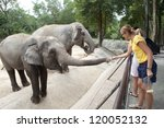 Woman Feeding The Elephant...