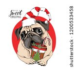 adorable beige puppy pug in a... | Shutterstock .eps vector #1200533458