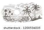 Palms And Sea Engraving Style...