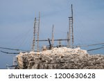 close up photo of trabucco la... | Shutterstock . vector #1200630628