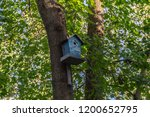 birdhouse on a tree in the... | Shutterstock . vector #1200652795