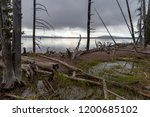 Yellowstone Lake  The Largest...