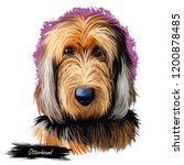 otterhound pet having long fur...   Shutterstock . vector #1200878485