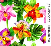 exotic flowers and leaves in... | Shutterstock . vector #1200920482
