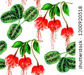 exotic flowers and leaves in... | Shutterstock . vector #1200920518