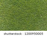 golf is a sport. players use...   Shutterstock . vector #1200950005