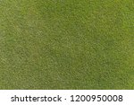 golf is a sport. players use...   Shutterstock . vector #1200950008