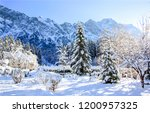 winter snow mountain forest... | Shutterstock . vector #1200957325