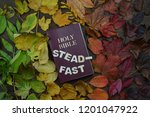 Small photo of colorful changeable autumn leaves in color gradient on brown wood with a bible in the middle and the word STEADFAST on it