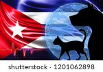 black cat and dog on the... | Shutterstock . vector #1201062898