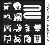 set of 13 care filled icons... | Shutterstock .eps vector #1201069222