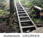 long trail ladder mount... | Shutterstock . vector #1201294315