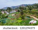small village in mountains near ... | Shutterstock . vector #1201294375