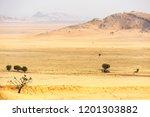 landscape at tsondab valley... | Shutterstock . vector #1201303882