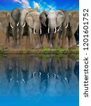 elephants at the watering place....   Shutterstock . vector #1201601752