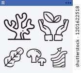 set of 5 nature outline icons...   Shutterstock .eps vector #1201622518