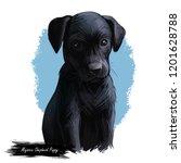 majorca shepherd puppy...   Shutterstock . vector #1201628788