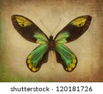 Vintage Background With Green...