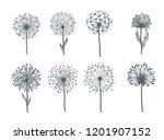 tender wild dandelion in all... | Shutterstock .eps vector #1201907152