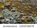 backgrounds and textures  old... | Shutterstock . vector #1201918678