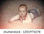 innocence  beauty  purity.... | Shutterstock . vector #1201973278