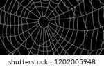 cobweb  isolated on black... | Shutterstock .eps vector #1202005948