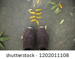 top view brown sneakers on a... | Shutterstock . vector #1202011108