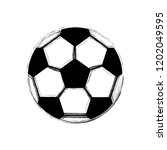isolated soccer ball image.... | Shutterstock .eps vector #1202049595