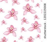 pink purple tender orchid... | Shutterstock .eps vector #1202225008