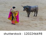 bullfighter in blue and gold... | Shutterstock . vector #1202246698