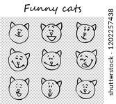 funny cats  kittens. doodle... | Shutterstock .eps vector #1202257438