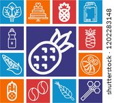 set of 13 food outline icons... | Shutterstock .eps vector #1202283148
