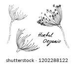 nifty gentle hand drawn...   Shutterstock .eps vector #1202288122