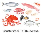Stock vector vector seafood set in flat style isolated on white simple icons of squid octopus dorado herring 1202350558