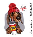 adorable dachshund dog in a red ... | Shutterstock .eps vector #1202394202