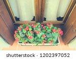 planter in austria | Shutterstock . vector #1202397052