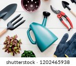top view of garden concept with ... | Shutterstock . vector #1202465938