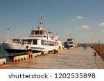 odessa  south of ukraine  the...   Shutterstock . vector #1202535898