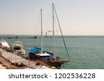 odessa  south of ukraine  the...   Shutterstock . vector #1202536228