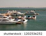 odessa  south of ukraine  the...   Shutterstock . vector #1202536252