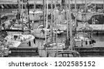 italy  sicily  mediterranean...   Shutterstock . vector #1202585152